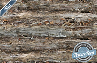 Wood Texture 18 | Tiled