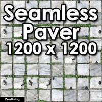 Stone 067 - Paver