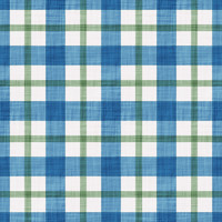 Coordinated Cottons - Green on Blue Plaid