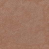 leather texture 5in1