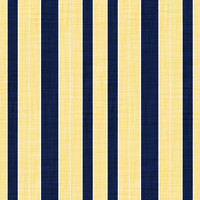 Coordinated Cottons -Navy on Yellow Stripes