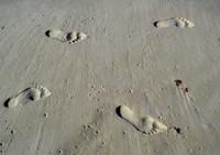 Beach footprints2