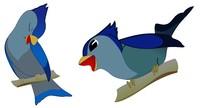 isolated birds