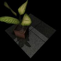 Granite_002 Academy Black