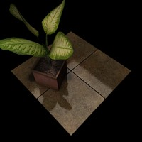 Stone Tiles 003 A