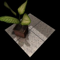 Granite_031 Bianco Regina