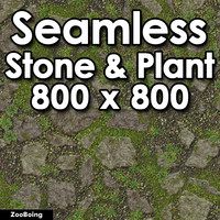 Stone 054 - Grass & Rock