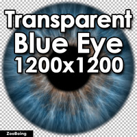 Biology 036 - Blue Eye