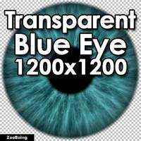 Biology 041 - Blue Eye