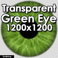 Biology 049 - Green Eye