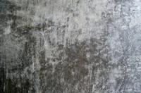 Moldy Wall 2
