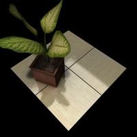Stone Tiles Collection C