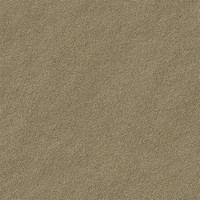 Brown Sand Texture 2