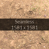 Yellow Soil Texture Map 12
