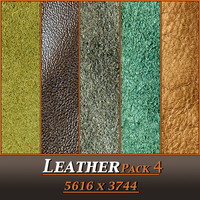 Leather Pack 4