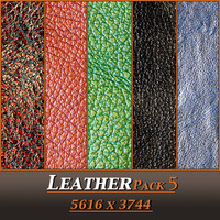 Leather Pack 5