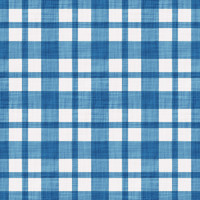 Coordinated Cottons - White on Blue Plaid