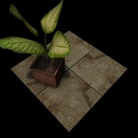 Stone Beige Travertine Tiles B