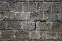 Wall_Texture_0039