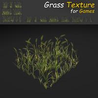 Wheat Grass Texture