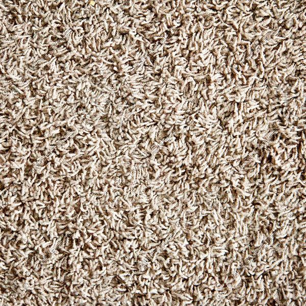 Texture Other Carpet Shag Rug