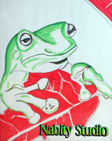 Tree Frog Drawing Prismacolor Markers