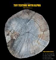 Tree Rings 002 Texture