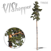 VIShopper_plant03
