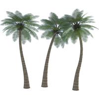 2D Palm Tree