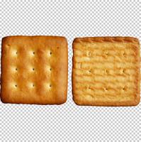 Cookies texture map 04