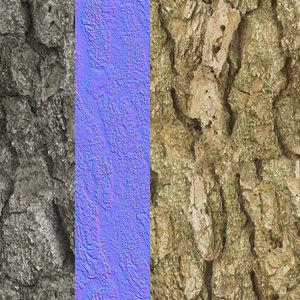 Tree Bark Tileable Texture 6