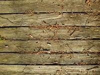 Old wood deck