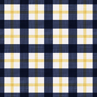 Coordinated Cottons - Yellow on Navy Plaid