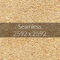 Sesame Texture map 02