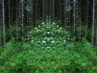 tileable landscape 07