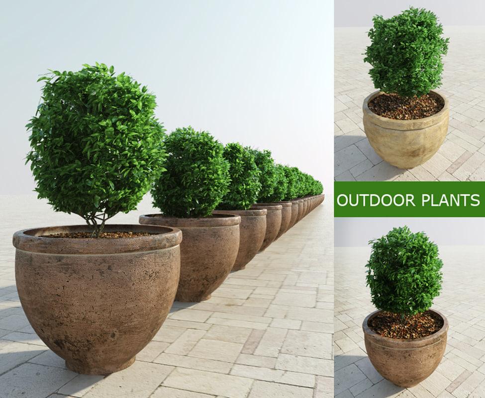 bushes pots 3d model