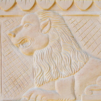 Loin Stone Art Texture 01