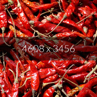 Red Chili Texture Map