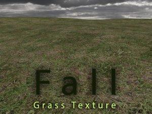 Fall Grass Texture