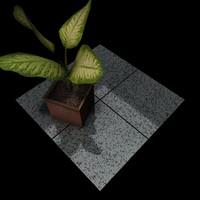 Granite_238 Zhangpu Black