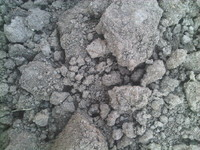 Soil Earth Soil