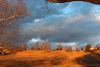 Morning Light on Winter Pasture