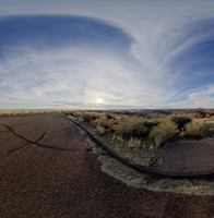 Petrified Forest 79