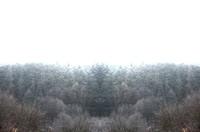 tileable landscape 10
