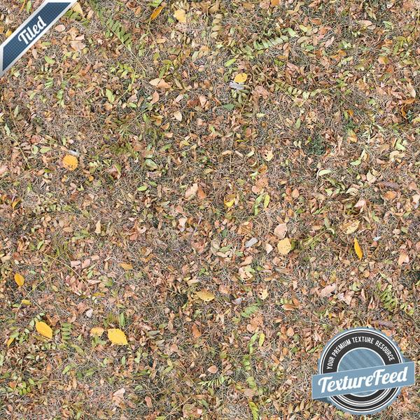 Grass Texture 05 | Tiled