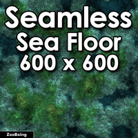 Water 045 - Sea Floor