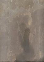 Stone Slate Tile Scan