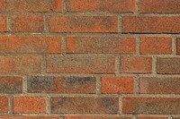 Wall_Texture_0035