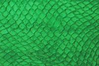 Hide_Texture_0006