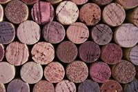 Cork_Texture_0006
